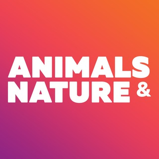 Telegram channel Animals & Nature - beautiful wallpapers logo